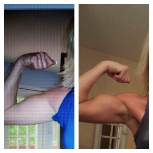 evolving arms 2010/2013