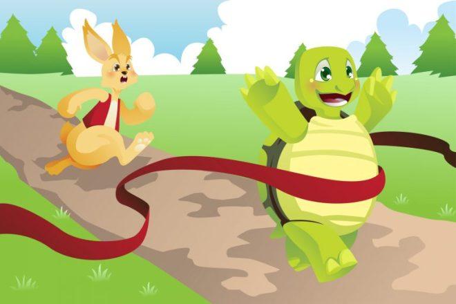 tortoise-hare-six-sigma-768x512